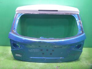 Дверь на Suzuki Vitara